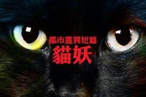 都市靈異短篇之貓妖(第16回)