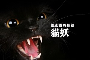 都市靈異短篇之貓妖(第24回)