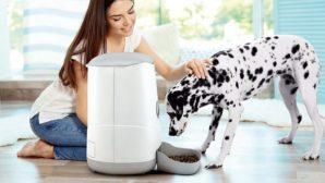 Petoneer Nutri 智能寵物餵食器 香港熱賣中 手機 APP 遙控「開餐」時間